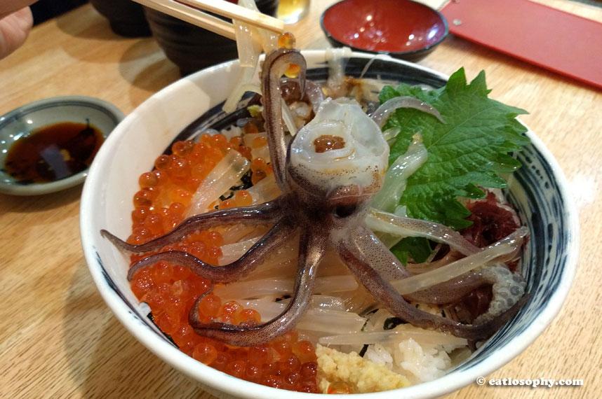 ikkatei_tabiji_squid
