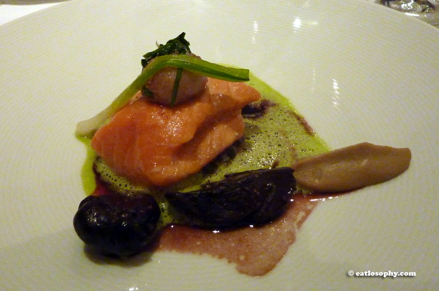 melisse_salmon