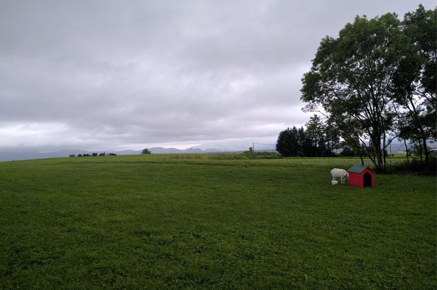 lake-hill-farm_view